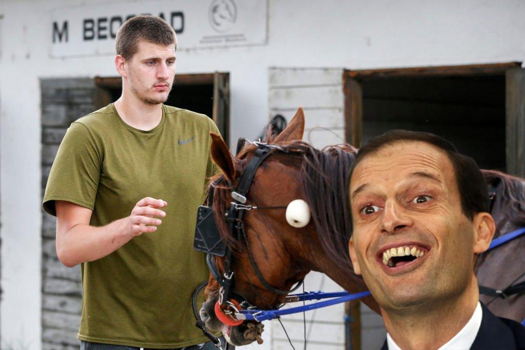 nikola jokic cavalli